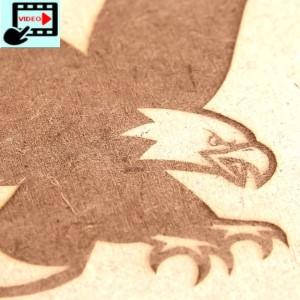 PLH3D-15W engraving MDF